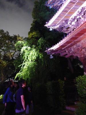 ホタル - ゲストハウス東京かぐらざか