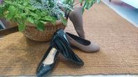 雨用の靴 - パウダー日記