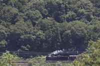 6月の日射しと白煙 - 2017年初夏・秩父 - - ねこの撮った汽車