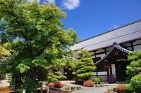 菩提樹の花@浄福寺 - デジタルな鍛冶屋の写真歩記