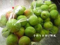 【第一弾 究極の梅仕事】梅の甘露煮 - 手作り弁当 野風