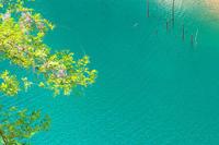 三湖物語'17 初夏 ファイナル - 但馬・写真日和