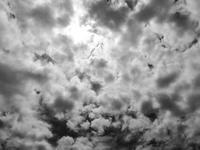 東京の空9 - はーとらんど写真感