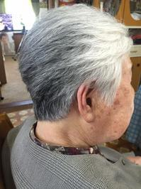 増えてます!ご自宅への訪問美容 - 三重県 訪問美容/医療用ウィッグ  訪問美容髪んぐのブログ