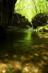 緑と水と… - momo*photo
