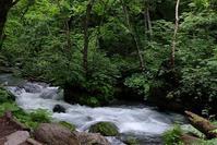 初夏の溪 - へっぽこな・・