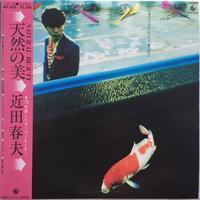 近田春夫 – 天然の美 (Haruo Chikada – Natural Beauty) - まわるよレコード ACE WAX COLLECTORS