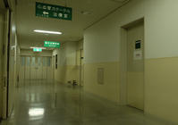 緊急救急センターへ運ばれての騒ぎとなりました - 生きる歓び Plaisir de Vivre。人生はつらし、されど愉しく美しく