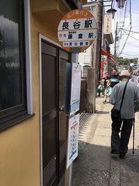 鎌倉へ再び  (5月12日) - ち~まもライフ