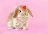 リアリズム絵画:[萌獣] ユニピョーン:一号(兎に角:つのうさぎ):メイキング - junya.blog(猫×犬)リアリズム絵画