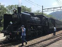 大井川鐡道 SLの旅 - noriさんのひまつぶ誌