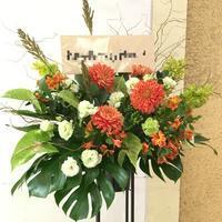 開店、周年祝いのお花はいかがですか? - ~ Flower Shop D.STYLE ~ (新所沢パルコ・Let's館1F)