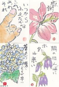 絵手紙便り 14枚と薔薇の貼り絵封筒 ♪♪  - NONKOの絵手紙便り