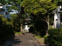 平尾 - 福岡彩々