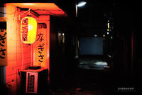 ☆ 集魚灯 ☆ - Trimming