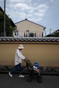 午後のお散歩 - Wayside Photos  ☆道端ふぉと☆
