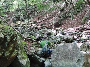 梅雨入り・・・ - a milestone in the stream
