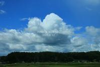 (約3ヶ月ぶりに)ドッグラン♪ - FUNKY'S BLUE SKY