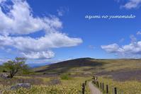 空と山と・・・車山高原♪ - azumiの夢まど