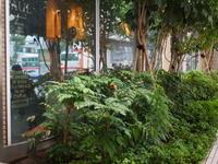 雨 駅前スナップ - エンジェルの画日記・音楽の散歩道