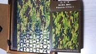 100均ジグソーパズル - ウンノ整体と静岡の夜