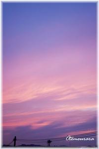 夕焼け色 紫陽花色 - 日々楽しく ♪mon bonheur