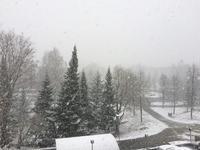 寒かった5月 - フィンランドでも筆無精