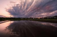 田んぼの中の夕焼け - View Finder - レンズの向こう側