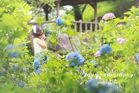 紫陽花姫と - from自由が丘 ベビー・キッズ・マタニティ・家族の出張撮影、say photography