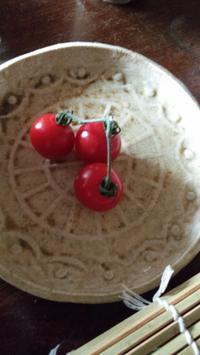 枝つきトマトに思う - 和合一致