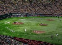 野球観戦 - More than now