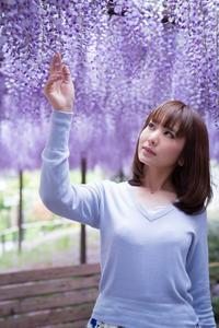 薄紫の花 - 雰囲気写真3