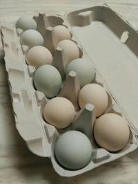 青い卵と不思議な黄身 - メイフェの幸せいっぱい~美味しいいっぱい~♪