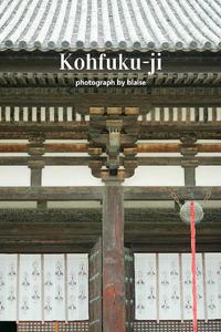興福寺 - for  someone
