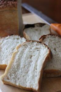 トーストブロートと風邪 - オーブン手帖