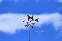 ランチして♪ 弾けて♪ 走って~~♪ - FUNKY'S BLUE SKY