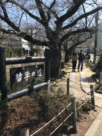 春の大阪・京都旅 8. 哲学の道から銀閣寺へ  - マイ☆ライフスタイル