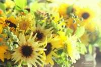 6月のverduredeco ~soleil~ - Live happy everyday!