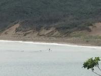 台湾佳楽水 今日の波 ももサイズ 晴れ無風 - 台湾サーフィン 佳楽水は今日もいい波    佳楽水好浪!