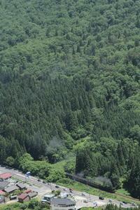 緑の山に期待を裏切る薄煙 - 磐越西線 - - ねこの撮った汽車