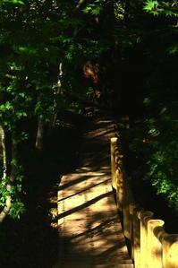 黄金清水 -秋田県美郷町- - のほほん日和(仮)