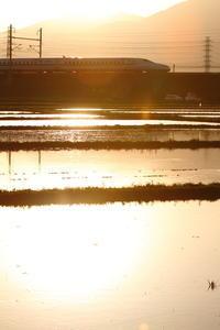 輝く大地 - 新幹線の写真