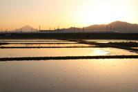 水面に黄昏て - 新幹線の写真