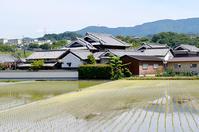 淡彩風景画講座・6月のテーマ「村里を描く」ご紹介 - アトリエTODAYのブログ