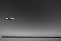 Low altitude flight - Slow Life36