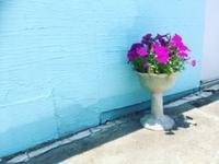 青色の壁 - 行く当てのない言葉