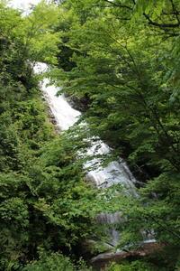 四万温泉周辺の水景 (撮影日:2017/6/15) - toshiさんの気まぐれフォトブログ