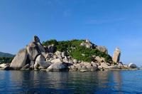 いろいろ増えて来ています。 - タイのタオ島から、たおみせブログ