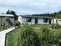 ニュージーランドらしい技術を学べるNational Trade Academy☆ - ニュージーランド留学とワーホリな情報