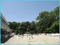晴天(*^-^*) - ひのくま幼稚園のブログ